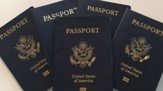 Generic Passports 03