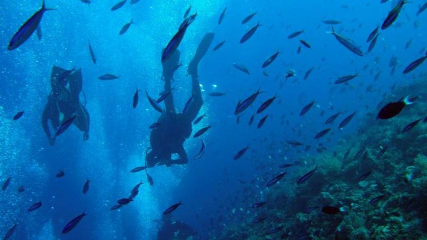 calentamiento-oceanos-salud-humana