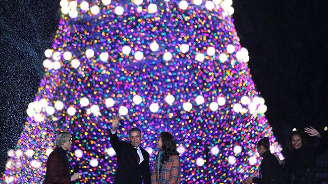 tlmd_arbol_obama