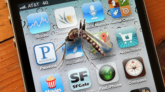 tlmd_mosquito_app_picture_phone_st