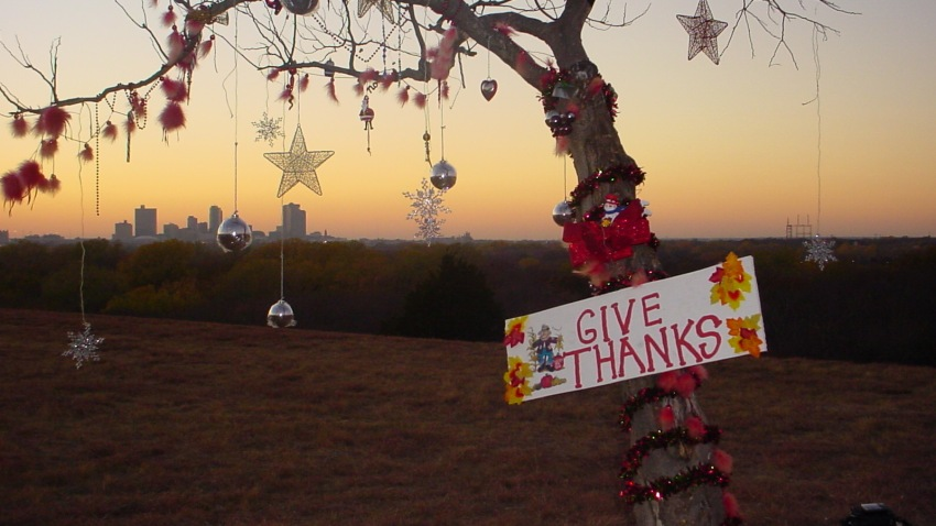 A tiny but proud tree decorated for the holidays and overlooking Interstate 30 in Fort Worth has disappeared, a sad and mysterious end to a tradition that had endured for decades.