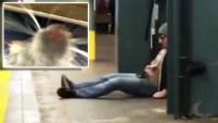 Selfie-Rat se toma Nueva York y se convierte en la nueva sensación viral. El hombre se llevó un susto mayúsculo.