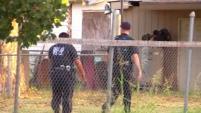 De acuerdo con el departamento de policía, el incidente comenzó cuando oficiales comenzaron a perseguir a un vehículo robado.