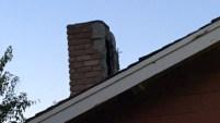 El dueño de casa encendió el fuego de la chimenea sin darse cuenta que había alguien adentro.