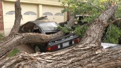 Varios vecindarios fueron afectados por las tormentas