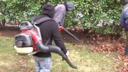 Controversia por uso de sopladoras de hojas en Dallas