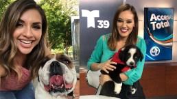 Fotos de televidentes y usuarios de Telemundo 39