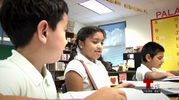 La importancia de la educación bilingüe