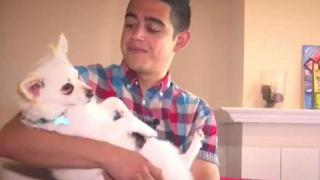 [TLMD - Dallas] Conoce a Blue: La mascota de nuestro reportero Emilio Ramos