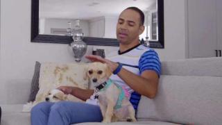[TLMD - Dallas] Las mascotas que adoptó Carlos Zapata