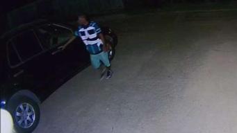 Alerta de robos en Oak Cliff