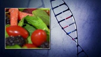 Tu ADN podría determinar la manera de perder peso