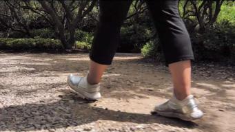 El gran ejercicio de caminar