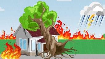 ¿Cómo prepararte en Texas en caso de un desastre?