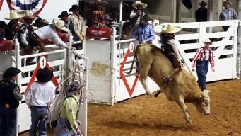 Inicia venta de boletos para el Fort Worth Stock Show Rodeo 2019