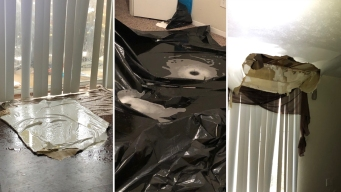 Colapsan techos de viviendas en Arlington