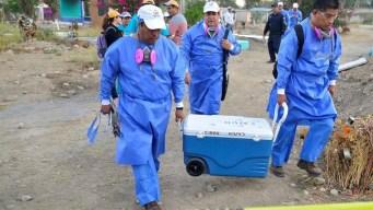 México: rescatan 19 cuerpos de 11 fosas clandestinas