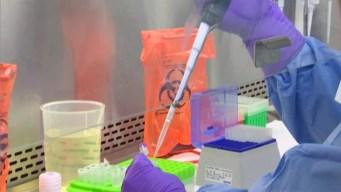 Pruebas de vacuna contra Zika empiezan en septiembre