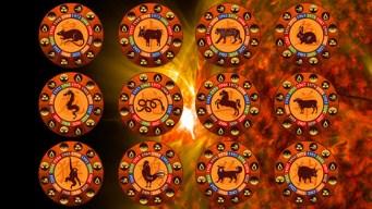 ¿Qué animal eres según el horóscopo chino?