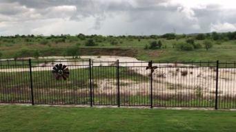 Videos muestran las tormentas en el norte de Texas