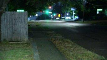 Investigan ataque de pit bull en Fort Worth
