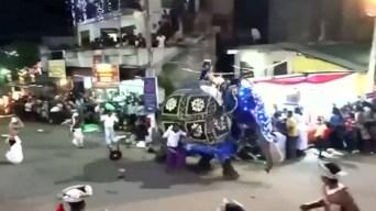 Video: elefantes pisotean a una multitud durante desfile