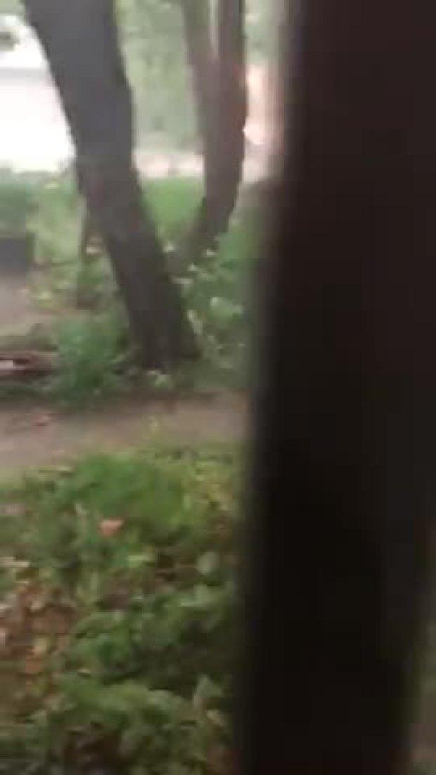 Weather video Denton