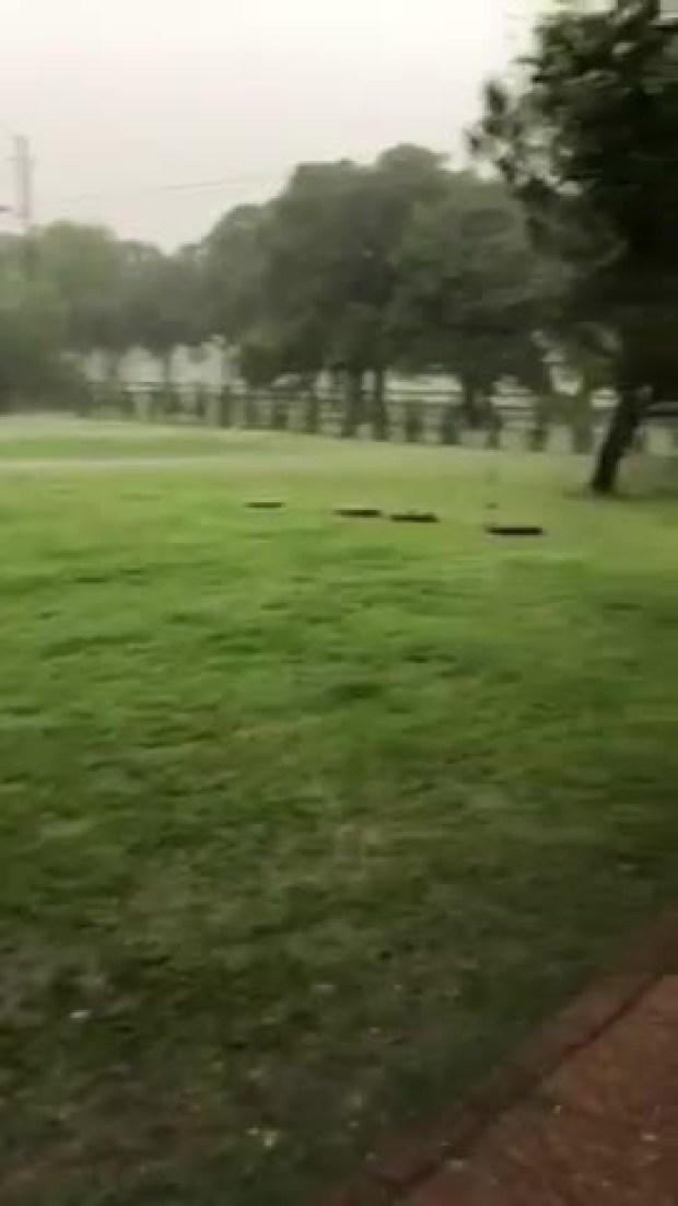 Rain argyle