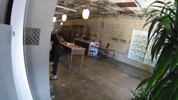 [TLMD - Dallas] Mira aquí por qué la buscan autoridades en Dallas