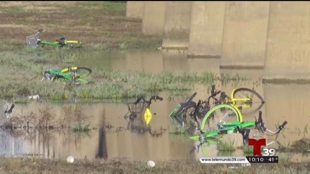 [TLMD - Dallas] Controversia en Dallas por bicicletas en calles