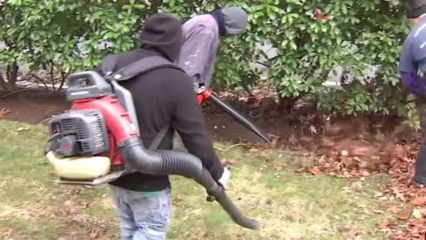 [TLMD - Dallas] Controversia por uso de sopladoras de hojas en Dallas