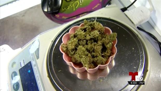 Infracción menor si es encontrado con marihuana