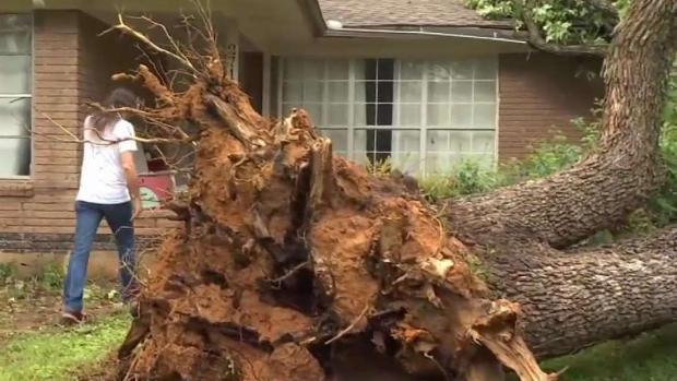 [TLMD - Dallas] Daños en Denton tras paso de tornado