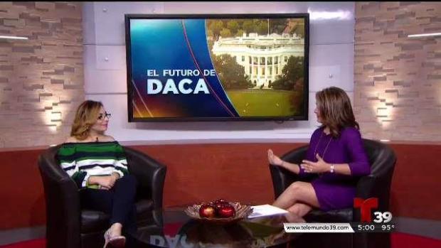 Abogada de migración responde dudas sobre DACA