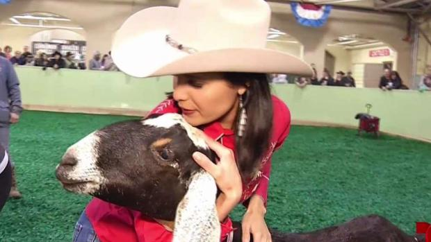 [TLMD - Dallas] Fort Worth Stock Show & Rodeo 2019