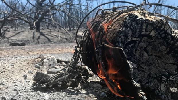 Incendios de pastizales en el Condado Palo Pinto