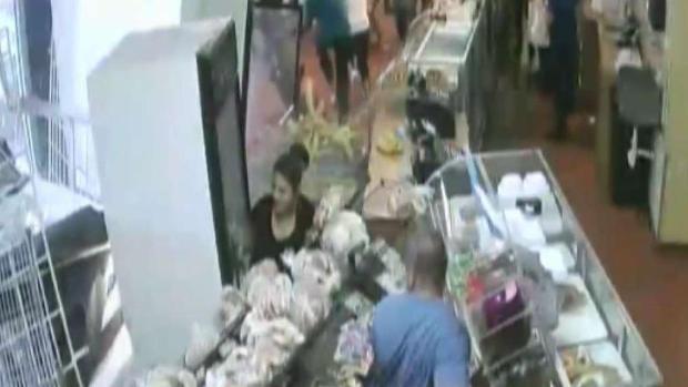 [TLMD - Dallas] Vehículo termina adentro de panadería en Garland