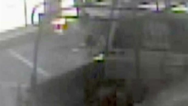 [TLMD - Tampa] Acusado de robar vehículo de FHP es arrestado en Clearwater