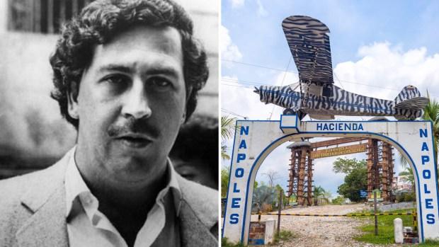 """""""Narcotours"""", populares recorridos que buscan eliminar en Colombia"""