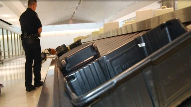 Fotos: Cosas insólitas que pasan por el aeropuerto de Houston