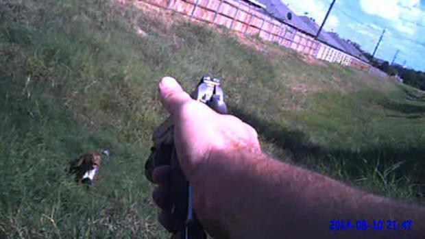 Video: Investigan a oficial que le disparó a perro
