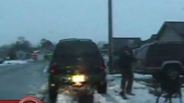 Video: Impacto: policía dispara y mata a perro