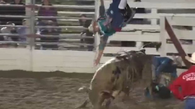 Video: ¡Toro lanza a vaqueros por los aires!