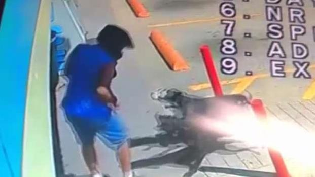 [TLMD - Dallas] Investigan ataque de perros en gasolinera de Everman