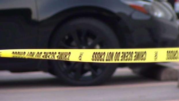 Mujer muere cuando policía de Arlington baleaba a perro