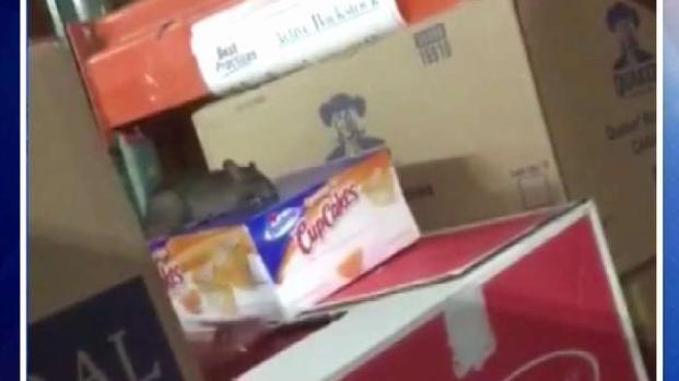 [TLMD - Dallas] Roedores en una tienda Kroger en Denton
