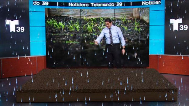 ¿Cómo la lluvia puede ayudar al jardín en tu vivienda?