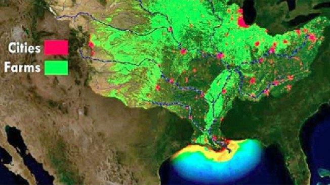 """La """"zona muerta"""" del Golfo de México"""