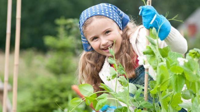 Seminario de jardinería
